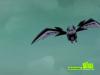 ratbat cartoon images Image 0