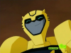 Animated Bumblebee